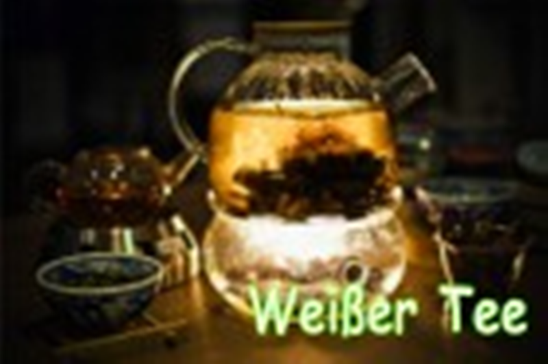 startseite-Weisser-TeeNUri6m6RqS8Cy_140x140