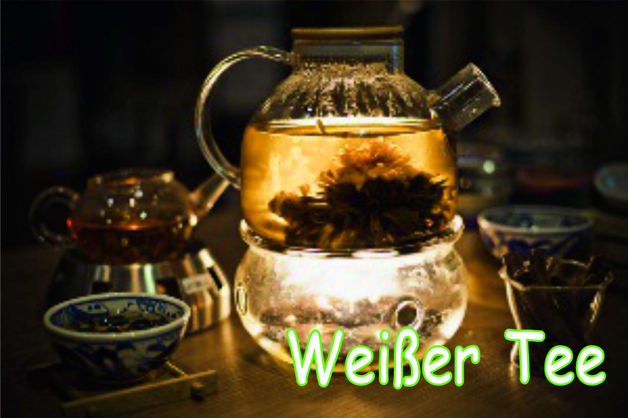 Weisser-Tee65YtB81Tc3Eg6