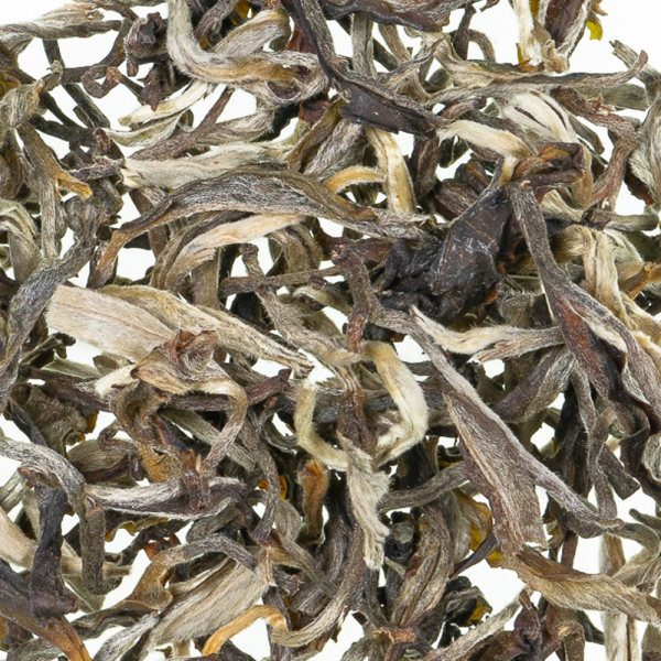 White Downy China Oolong